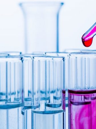 Die Biochemie von Storys